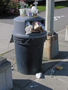 Garbage problem at Alki Beach